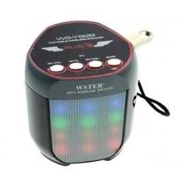 Mini speaker Bluetooth portatile LED