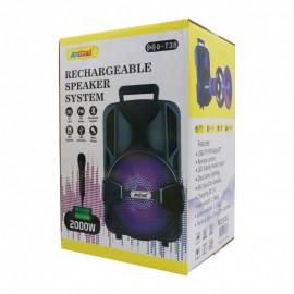 Cassa BT + microfono con filo 80W